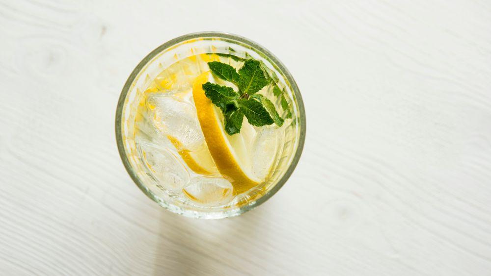 Spirit Bear Lemon Basil
